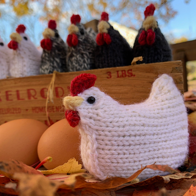 Pocket Hen - Leghorn and Flock